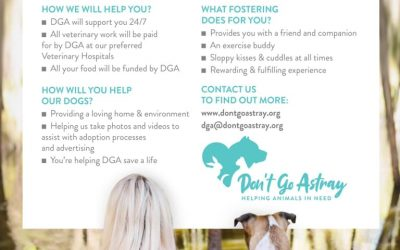 Looking for YOU, Yes YOU to become a Foster Carer! Contact us today.